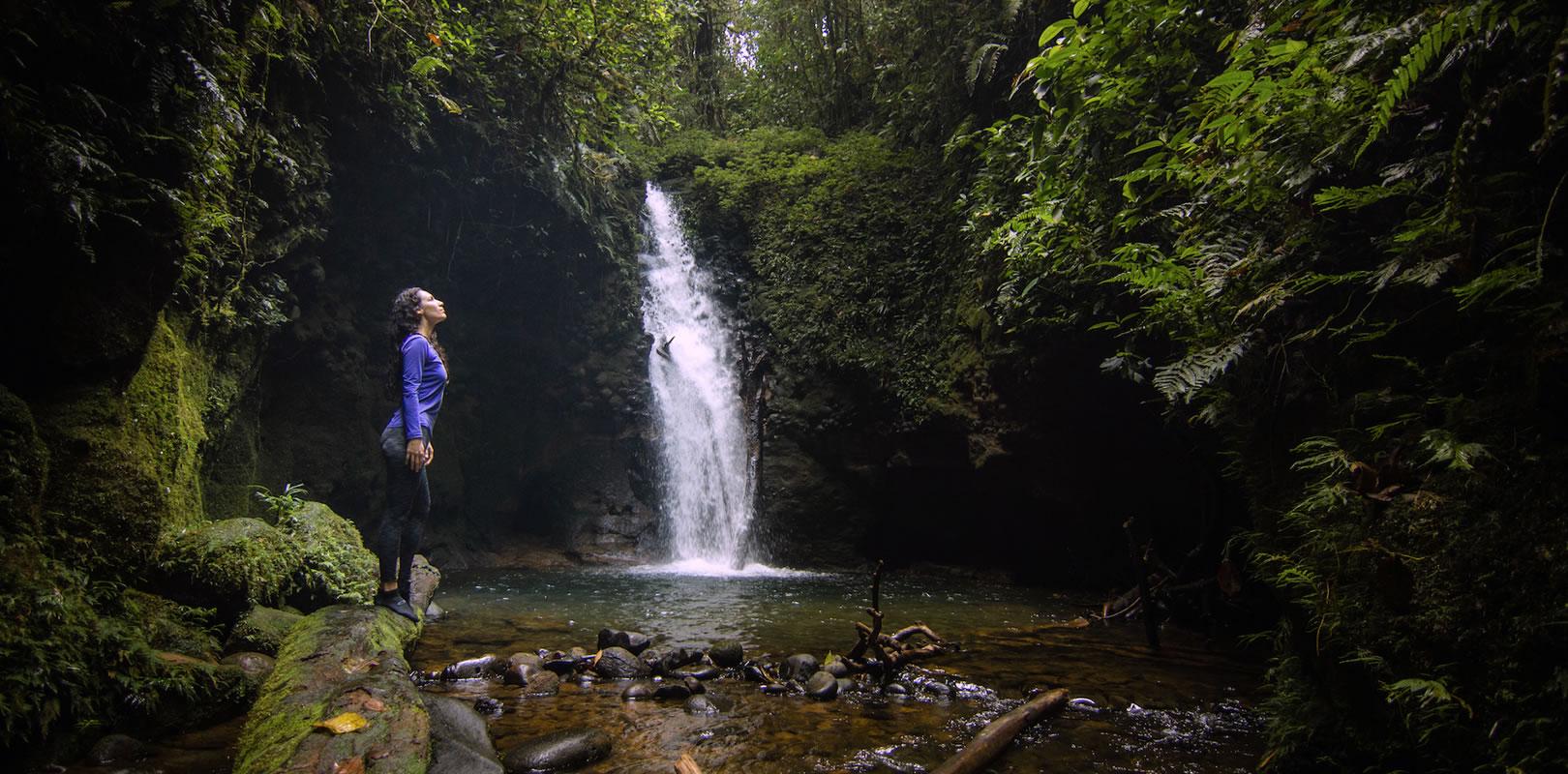 Mi experiencia con la ayahuasca en Ecuador