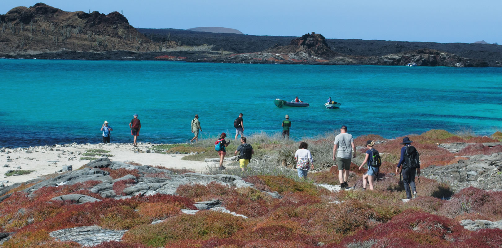 Galapagos Cruise: Sailing on the Golondrina Yacht